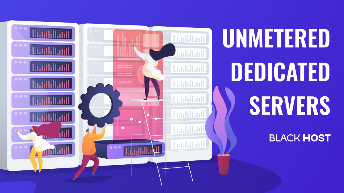 Unmetered Dedicated Server, How to Pick the Right One?